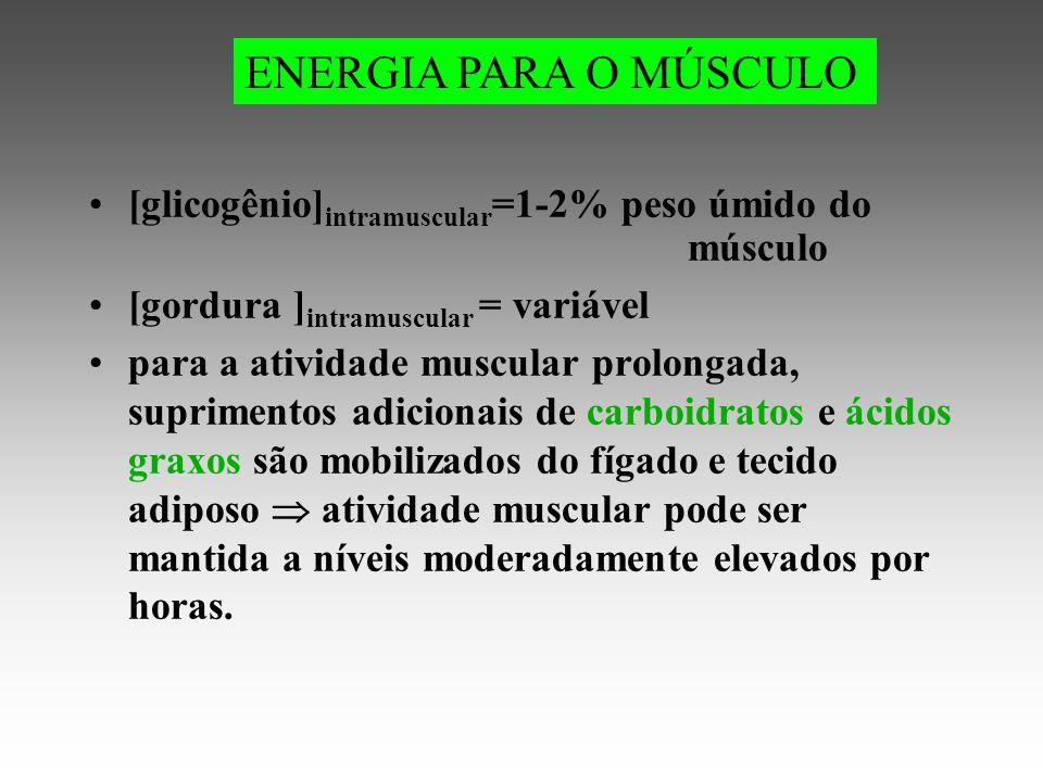 ENERGIA PARA O MÚSCULO [glicogênio]intramuscular=1-2% peso úmido do